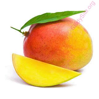 English to English Dictionary - Meaning of Mango in English